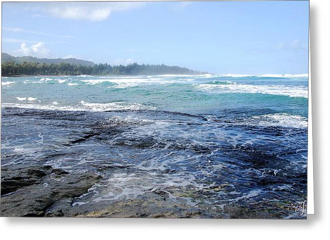 Hawaii Greeting Card by Thea Wolff