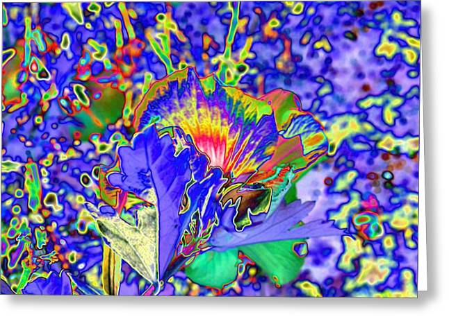 Abstract Flowers Greeting Card by Belinda Cox