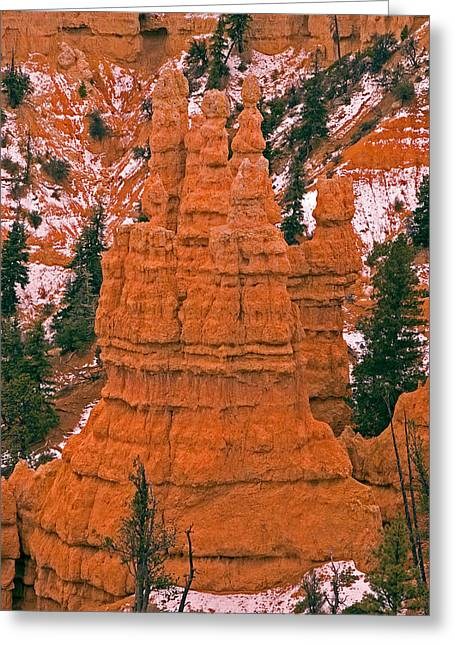 Bryce Canyon N.p. Greeting Card by Larry Gohl