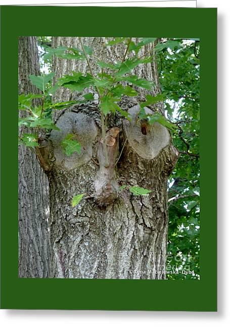 Trees I Love 13 One Who Watches Greeting Card by Anna Folkartanna Maciejewska-Dyba