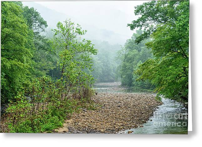 Greeting Card featuring the photograph Williams River Summer Mist by Thomas R Fletcher