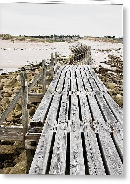 Wooden Walkway Greeting Card