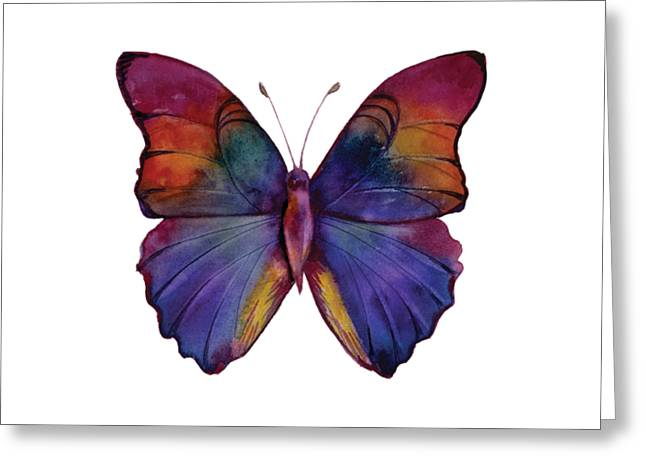 13 Narcissus Butterfly Greeting Card by Amy Kirkpatrick