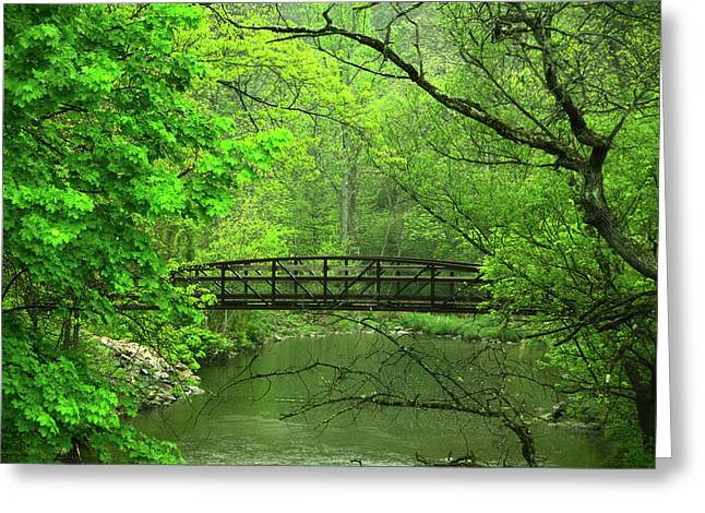 Jacobsburg State Park Pa Greeting Card