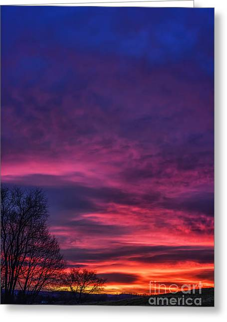 Sunrise Drama Greeting Card by Thomas R Fletcher