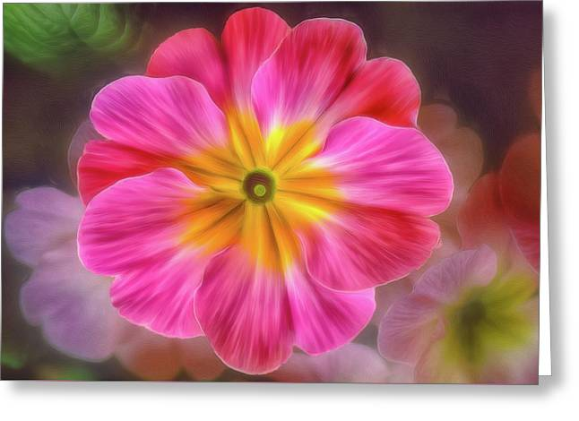 Pink Primrose #1 Greeting Card