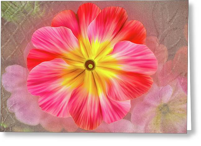 Pink Primrose #2 Greeting Card