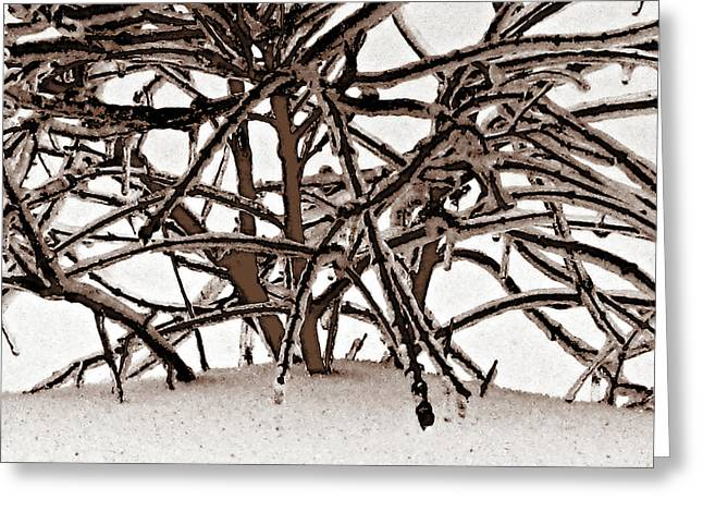 Grounded In Earth  - Series 1 Greeting Card by Debra     Vatalaro