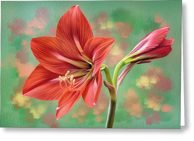 Amaryllis #1 Greeting Card