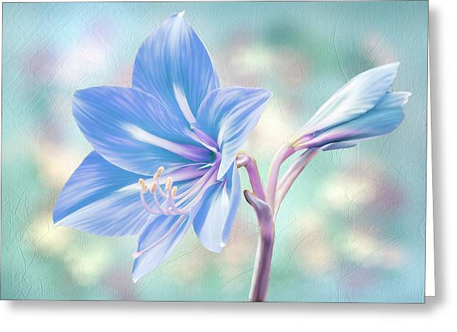 Amaryllis #2 Greeting Card