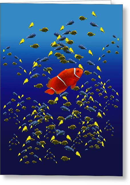 Clown Fish Photographs Greeting Cards - 153 Greeting Card by Peter Holme III