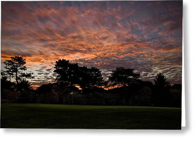 16 Green Dawn Greeting Card by Edwin Voorhees