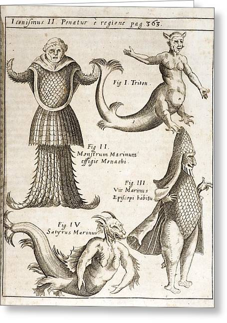 1662 Schott Sea Monsters And Mermaids Greeting Card