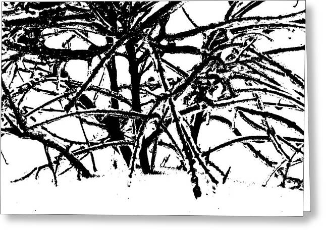 Grounded In Earth  - Series 1 Greeting Card