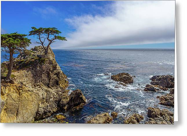 17 Mile Drive Pebble Beach Greeting Card by Scott McGuire
