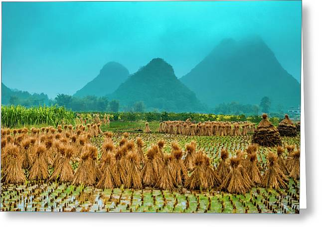 Beautiful Countryside Scenery In Autumn Greeting Card