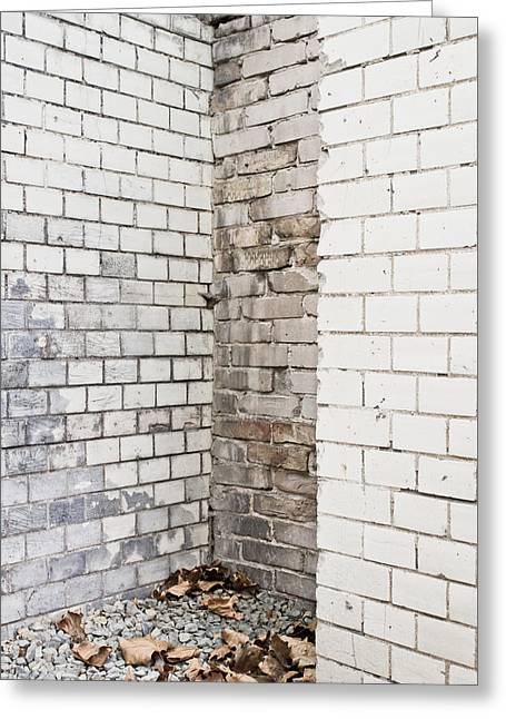 Damaged Wall Greeting Card by Tom Gowanlock