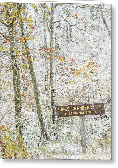 Cranberry Wilderness Greeting Card
