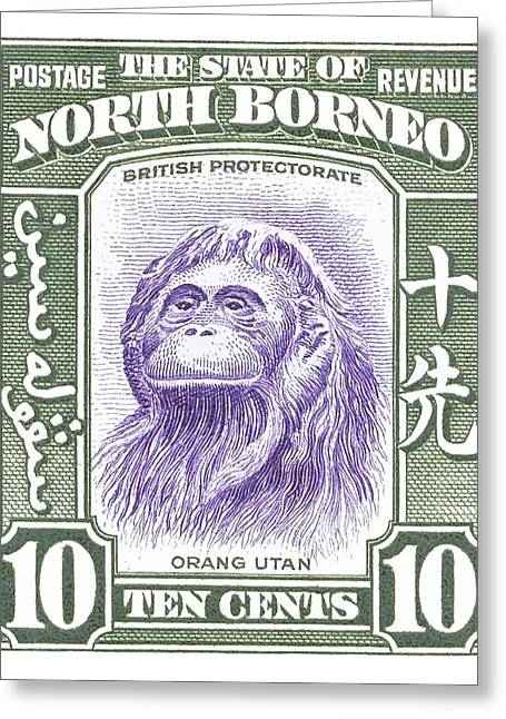 1939 North Borneo Orangutan Stamp Greeting Card