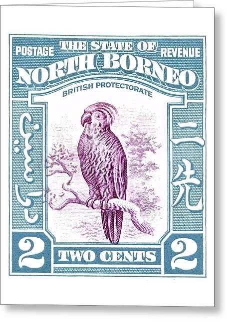 1939 North Borneo Palm Cockatoo Postage Stamp Greeting Card