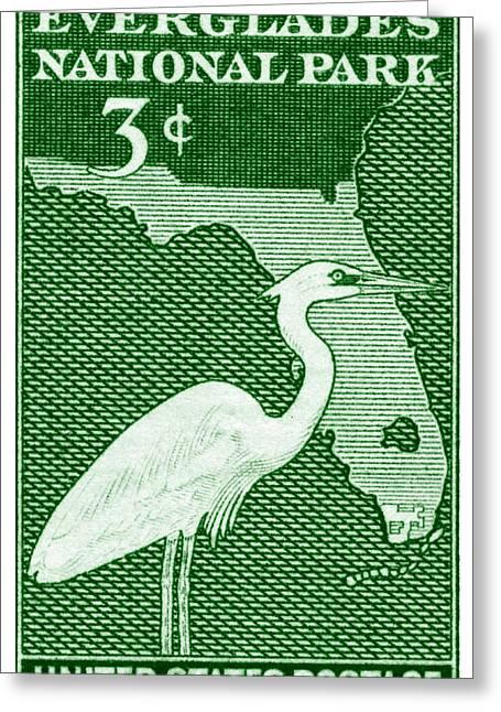 1947 Everglades Florida Stamp Greeting Card