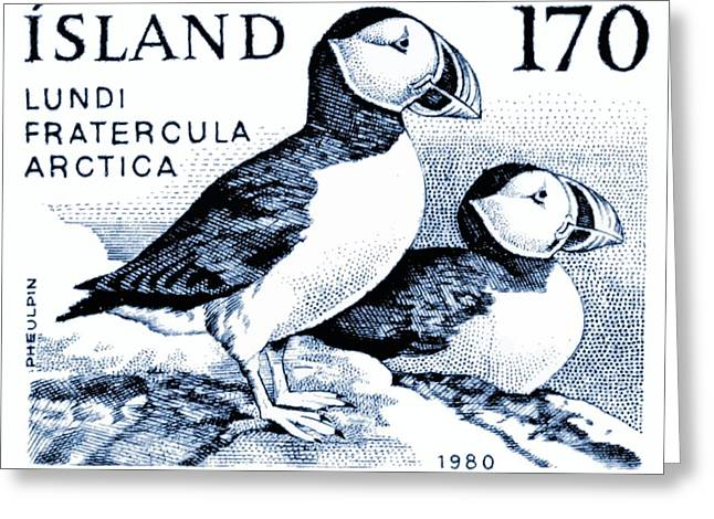 1980 Iceland Atlantic Puffins Postage Stamp Greeting Card