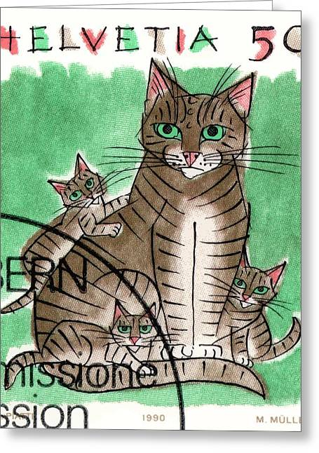 1990 Switzerland Cats Postage Stamp Greeting Card