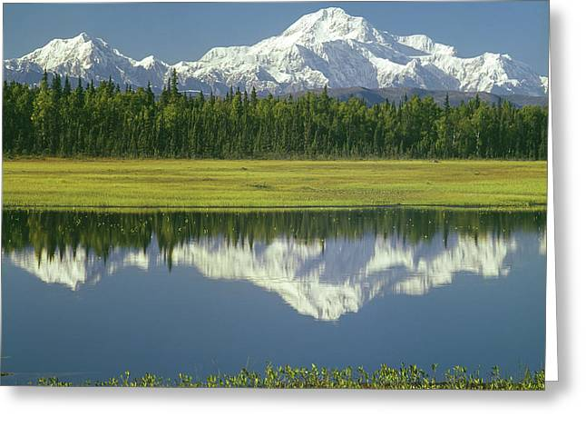 1m1325 Mt. Hunter And Mt. Denali Greeting Card