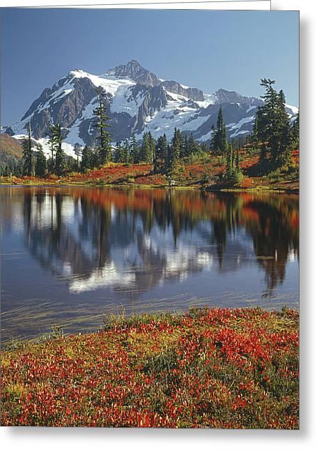1m4208 Mt. Shuksan And Picture Lake Greeting Card