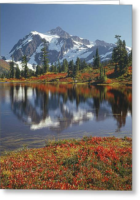 1m4208 Mt. Shuksan And Picture Lake Greeting Card