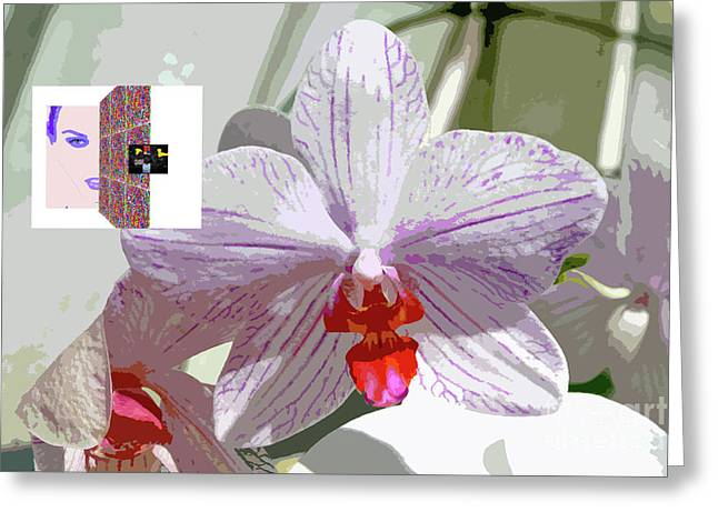 2-1-2057b Greeting Card