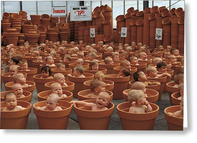 123 Pots Greeting Card by Anne Geddes