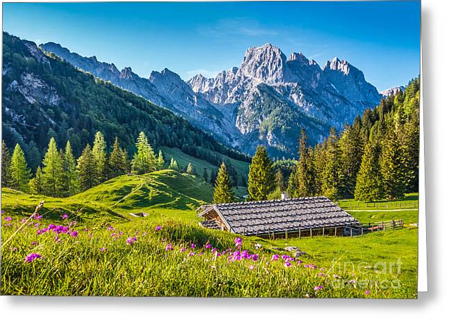 Alpine Beauty Greeting Card by JR Photography