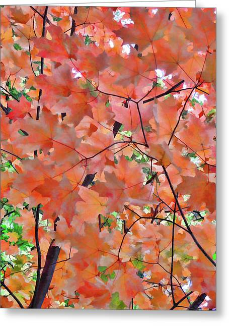 Autumn Foliage 1 Greeting Card by Lanjee Chee