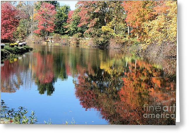 Autumn In New England Greeting Card by Amy Holmes
