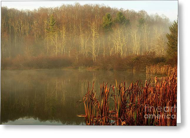 Autumn Morning Mist On Lake Greeting Card by Thomas R Fletcher