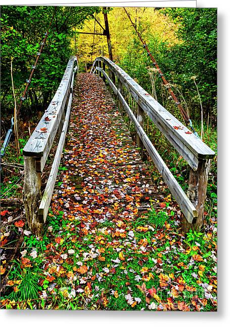Autumn Upper Shavers Fork Preserve Greeting Card by Thomas R Fletcher