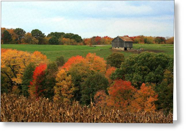 Greeting Card featuring the photograph Barn On Autumn Hillside by Angela Rath