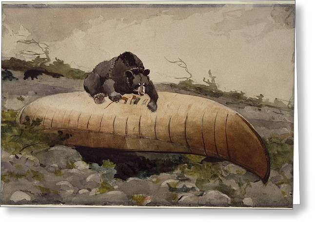 Bear And Canoe Greeting Card by MotionAge Designs