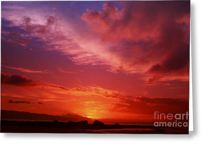 Beautiful Sunset Greeting Card by Vince Cavataio - Printscapes