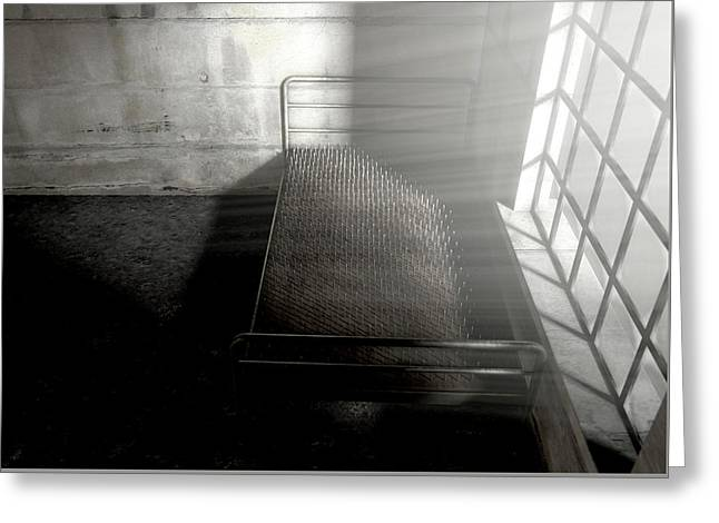 Bed Of Nails In A Room Greeting Card by Allan Swart