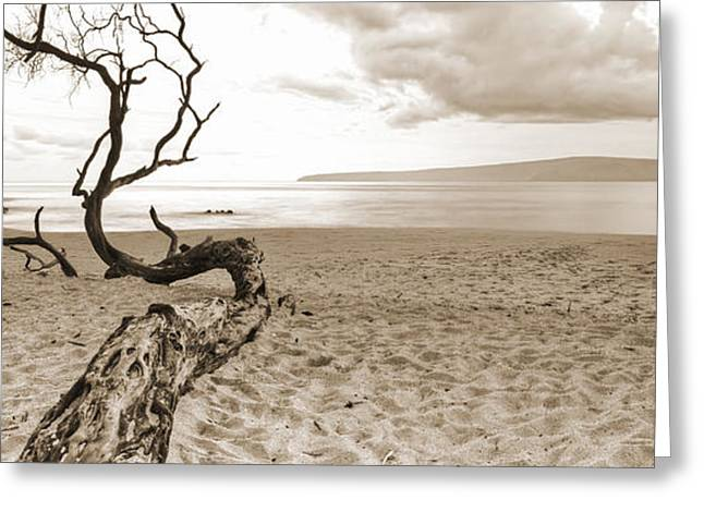 Maui Greeting Cards - Big Beach Maui Hawaii Greeting Card by Dustin K Ryan