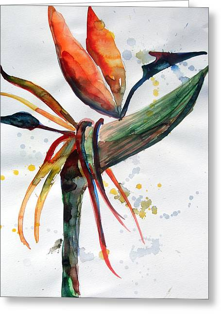 Bird Of Paradise Greeting Card by Mindy Newman