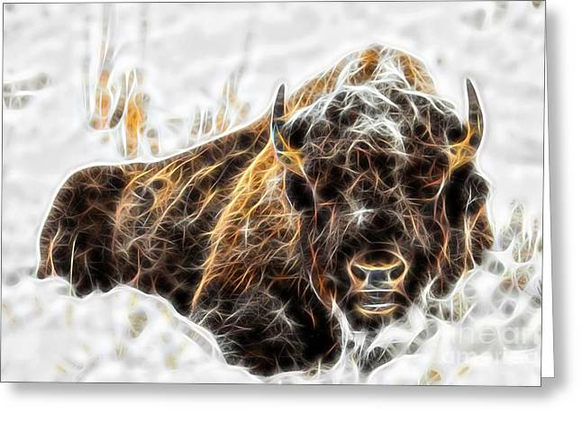 Bison Collection Greeting Card by Marvin Blaine