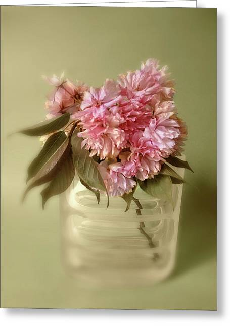 Blossom Greeting Card by Jessica Jenney