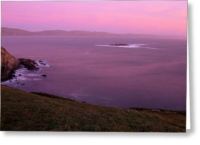 Bodega Bay Greeting Card by Soli Deo Gloria Wilderness And Wildlife Photography