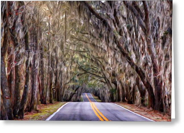 Canopy Road - Tallahassee, Fl Greeting Card