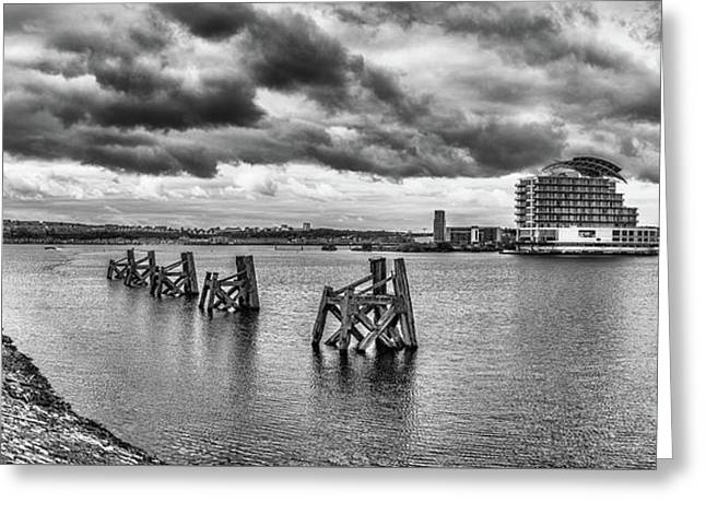Cardiff Bay Panorama Mono Greeting Card by Steve Purnell