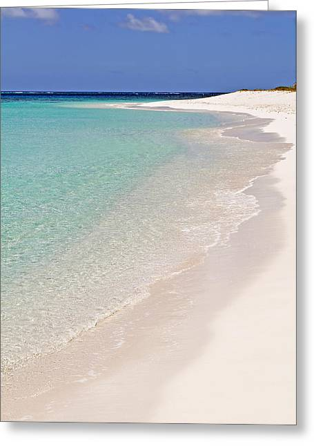 Caribbean Beach. Greeting Card by Fernando Barozza