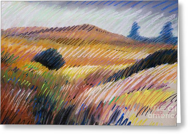 Coastal Hills Greeting Card by Donald Maier